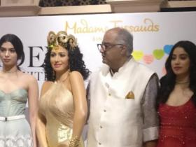 Exclusives,Sridevi Wax Statue